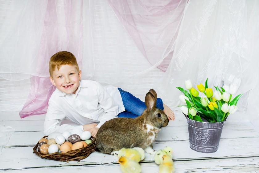 Fotografie _MG_0329.jpg v galerii Velikonoce od fotografky Eriky Matějkové