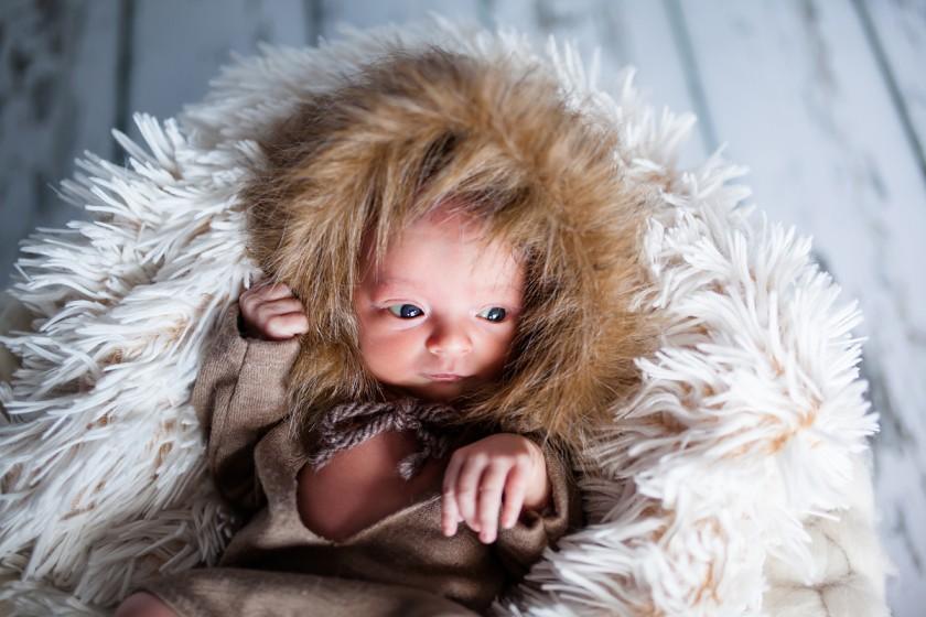 Fotografie _MG_7022.jpg v galerii Novorozenci od fotografky Eriky Matějkové
