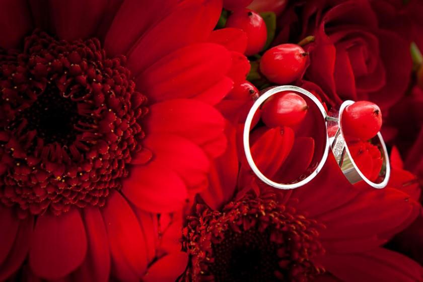 Fotografie 100 (92).jpg v galerii Prstýnky, kytice od fotografky Eriky Matějkové