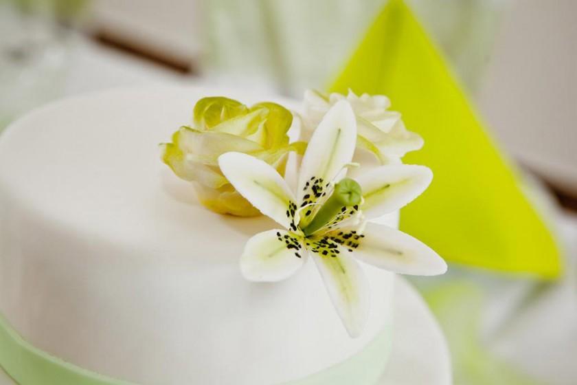 Fotografie 105-zelene (5).jpg v galerii Svatební tabule od fotografky Eriky Matějkové