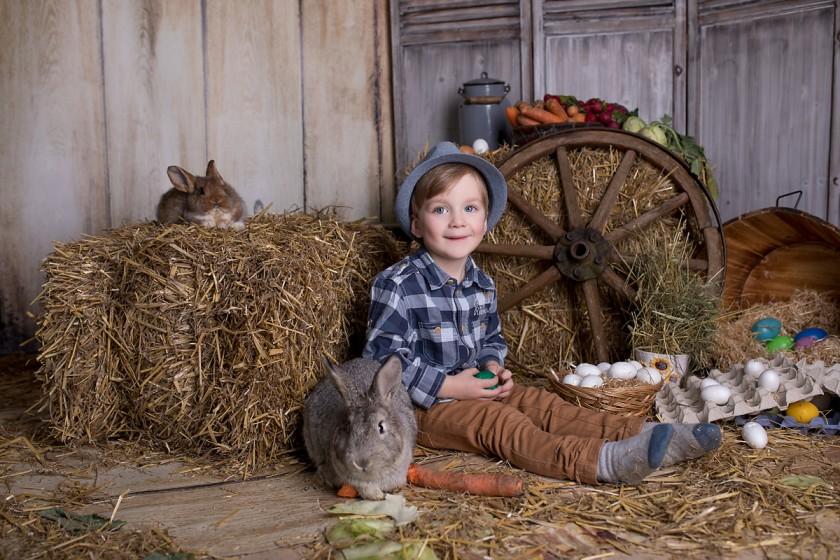 Fotografie 684A7904.jpg v galerii Velikonoce od fotografky Eriky Matějkové