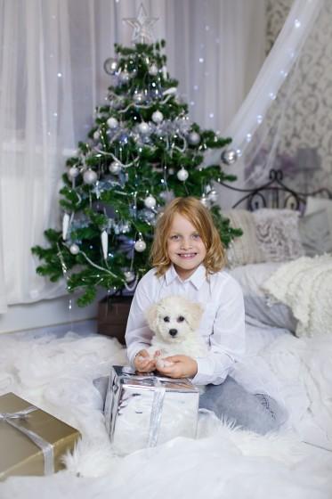 Fotografie IMG_5186.jpg v galerii Vánoce od fotografky Eriky Matějkové