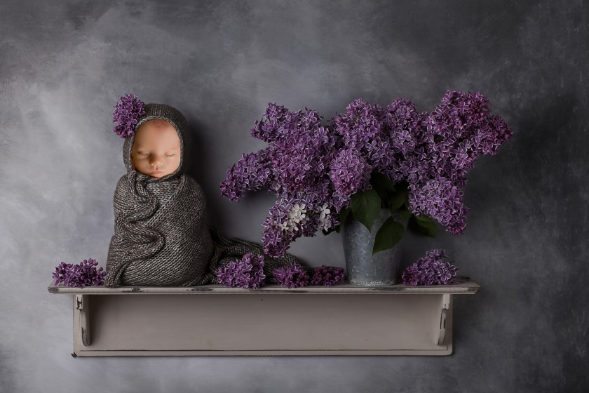 Fotografie lilac-shelf-insert-downloadwww.jpg v galerii Novorozenci od fotografky Eriky Matějkové