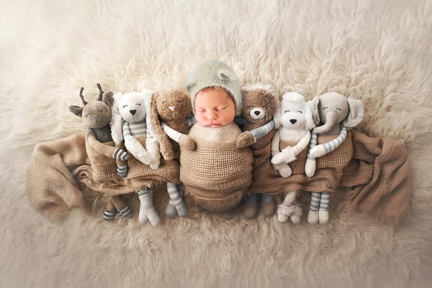 Fotografie zviratkawww.jpg v galerii Novorozenci od fotografky Eriky Matějkové