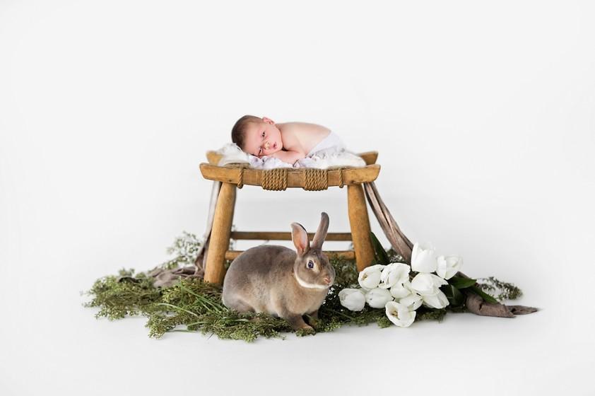 Fotografie velbanovawww.jpg v galerii Novorozenci od fotografky Eriky Matějkové