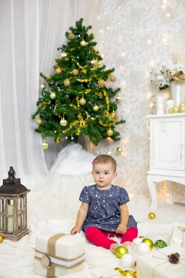 Fotografie 684A3147.jpg v galerii Vánoce od fotografky Eriky Matějkové