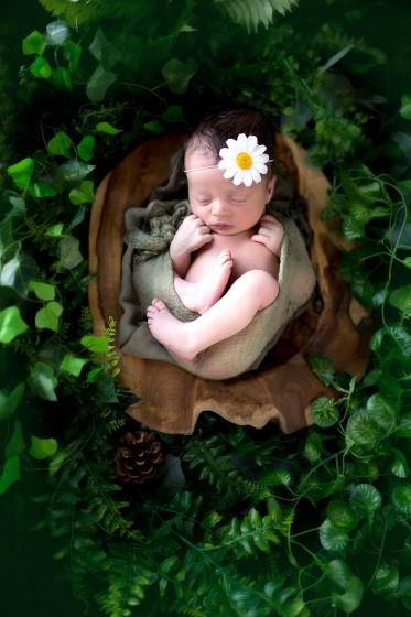 Fotografie 684A1146a.jpg v galerii Novorozenci od fotografky Eriky Matějkové