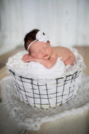 Fotografie 684A1229.jpg v galerii Novorozenci od fotografky Eriky Matějkové