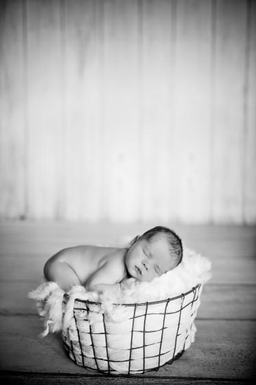 Fotografie 684A2740-2.jpg v galerii Novorozenci od fotografky Eriky Matějkové