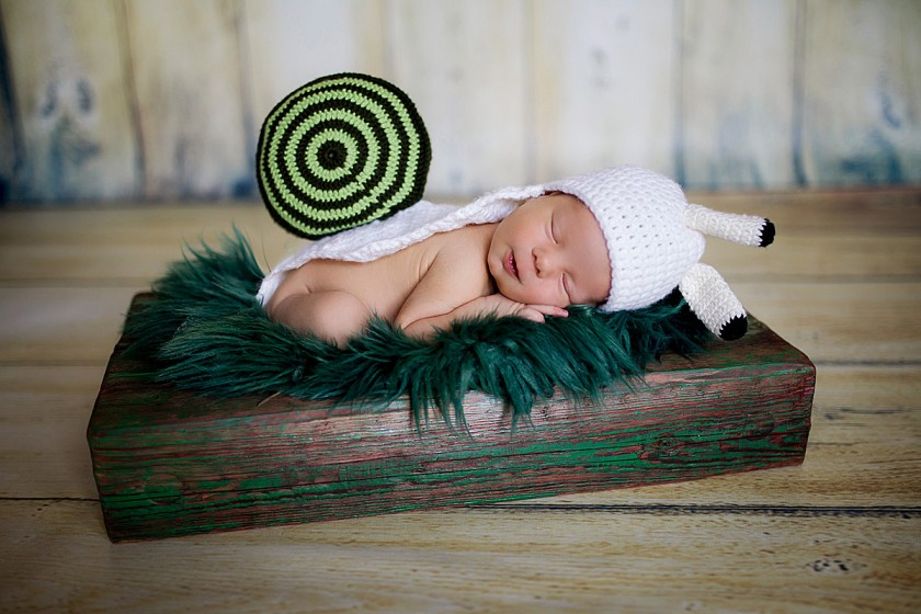 Fotografie 684A4913.jpg v galerii Novorozenci od fotografky Eriky Matějkové