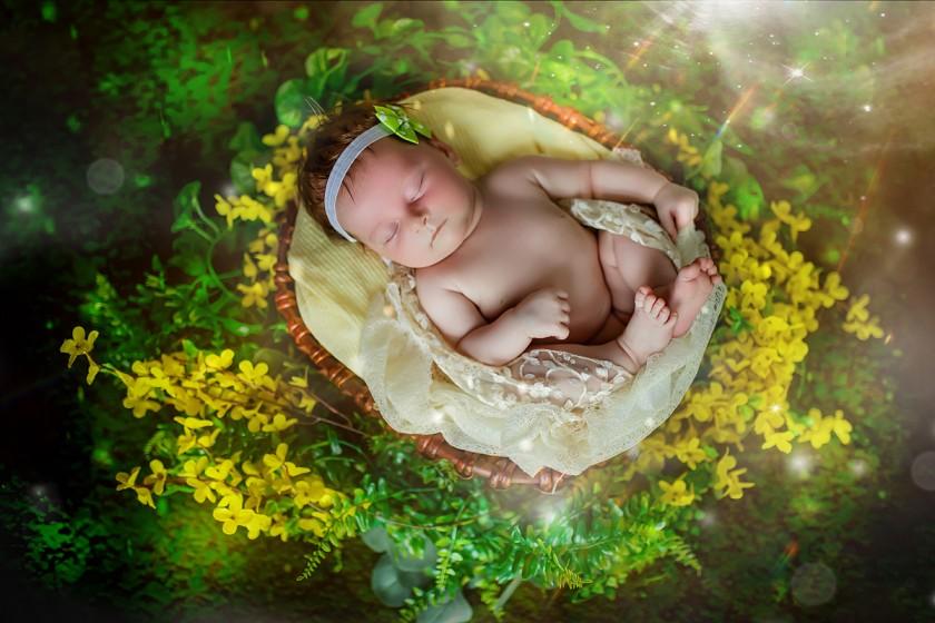 Fotografie 684A6838ab.jpg v galerii Novorozenci od fotografky Eriky Matějkové