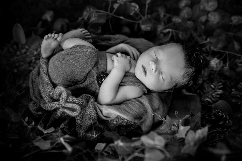 Fotografie 684A8792-2.jpg v galerii Novorozenci od fotografky Eriky Matějkové