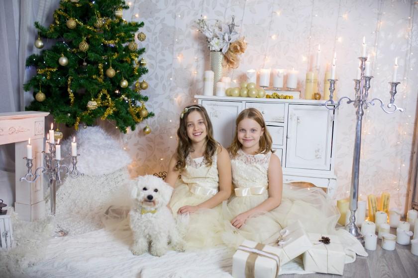 Fotografie 684A4683upr.jpg v galerii Vánoce od fotografky Eriky Matějkové