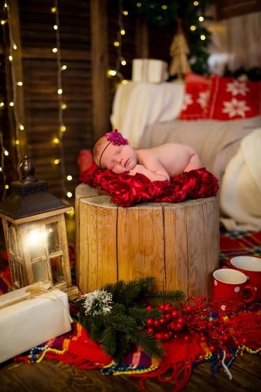 Fotografie 684A0480.jpg v galerii Vánoce od fotografky Eriky Matějkové