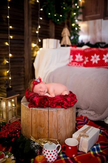 Fotografie 684A6211.jpg v galerii Vánoce od fotografky Eriky Matějkové