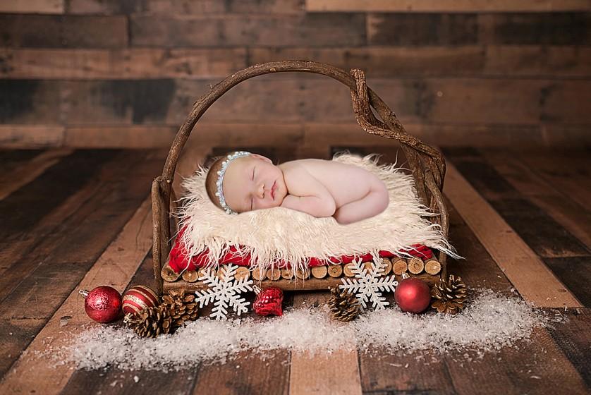 Fotografie 684A6818a.jpg v galerii Vánoce od fotografky Eriky Matějkové