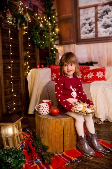 Fotografie 684A7153.jpg v galerii Vánoce od fotografky Eriky Matějkové